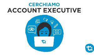 Timmagine cerca account executive